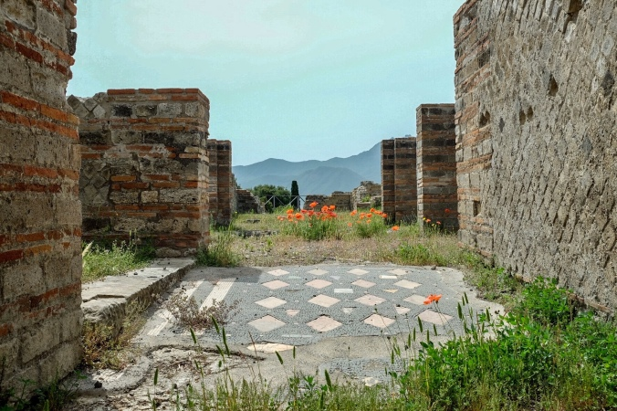 Grass grows among stone walls and tiled floors in a ruin of a